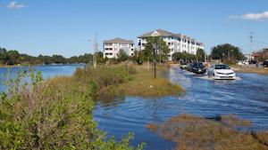 Hamptons Roads Flooding